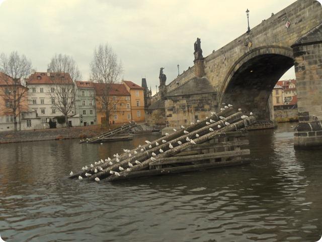 Prague 064