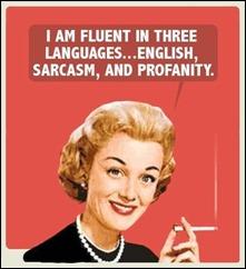 englishsarcasmprofanity